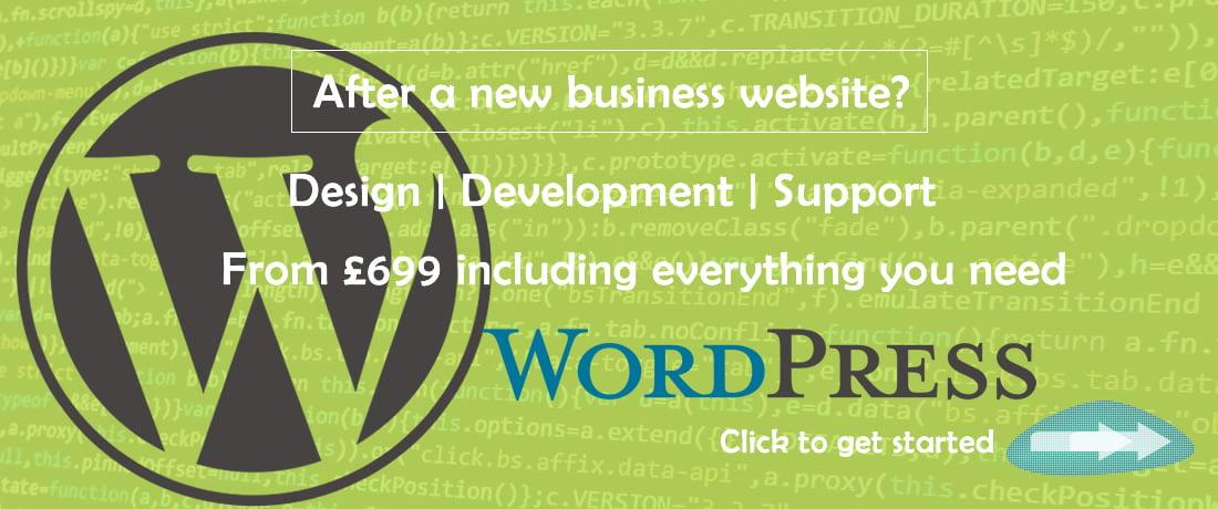 wordpress new business website development
